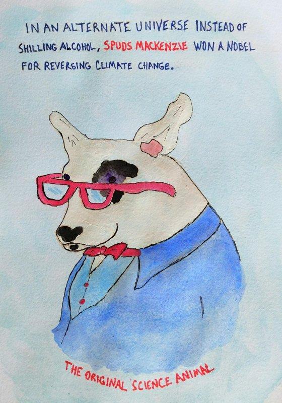 Alternate Timeline Pop Culture Studies #spudsmackenzie #science #climatechange
